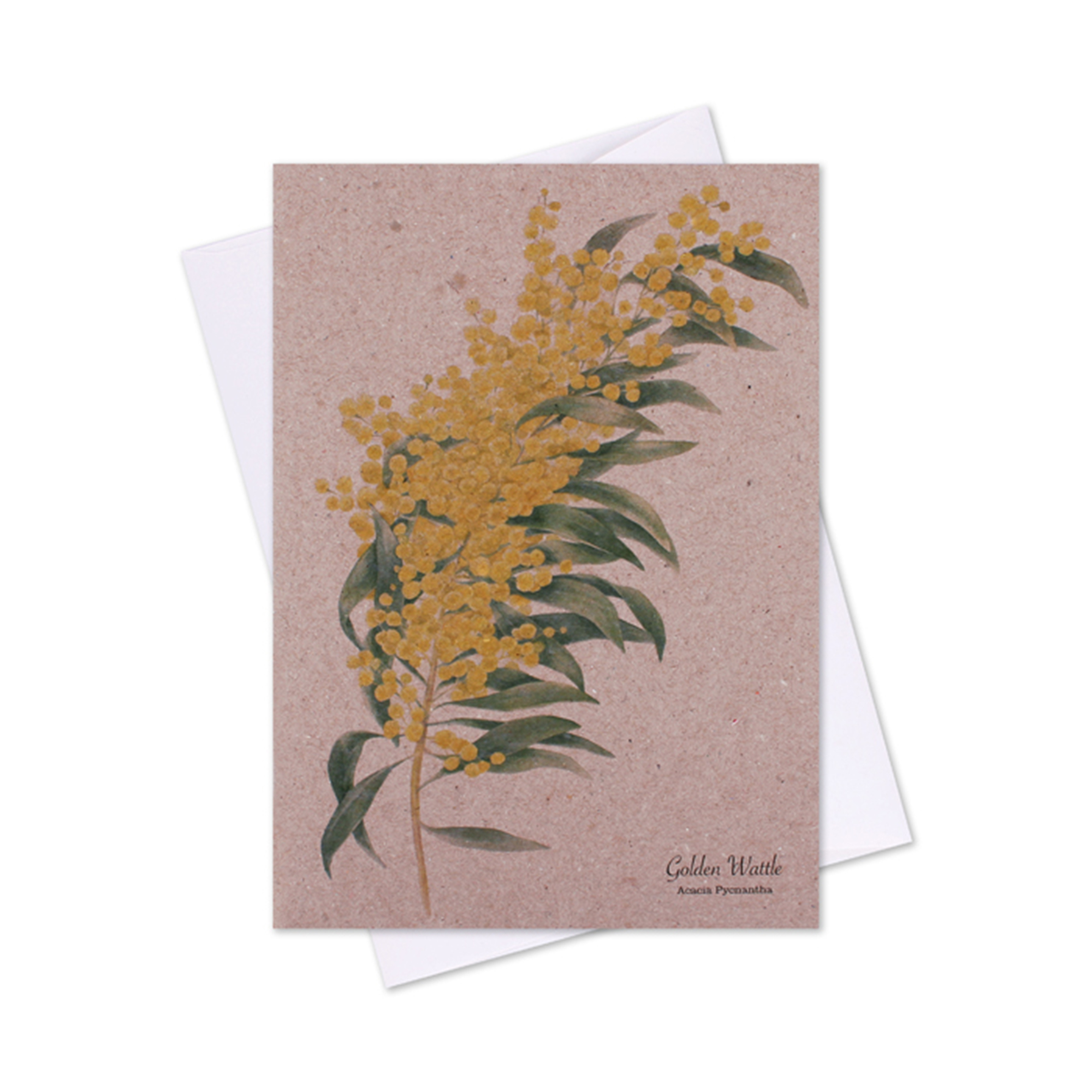 Greeting Cards The Linen Press